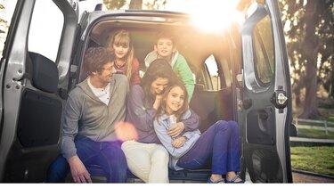 Dacia - Consumo