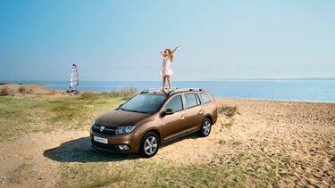 Dacia Posventa - Dacia España