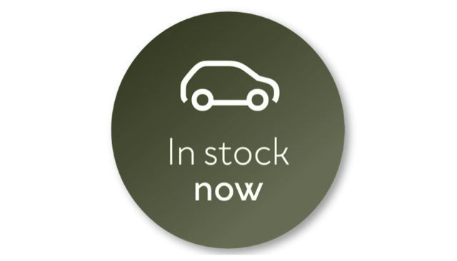 Dacia In stock