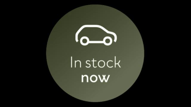 In Stock Dacia