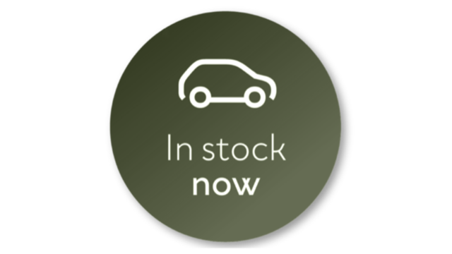 In Stock Dacia