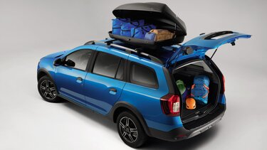 Logan MCV Stepway - Roof box