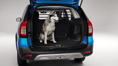 Logan MCV Stepway - Boot bin