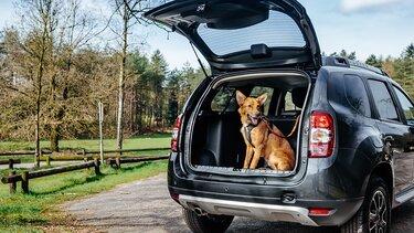 Dacia Duster Exterior Hond
