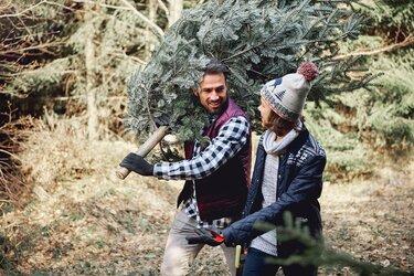 Paar mit Tannenbaum