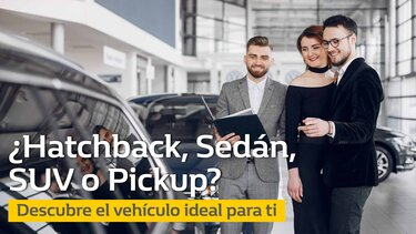 Descubre el vehículo ideal para ti