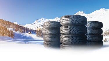 Renault Winterkompletträder