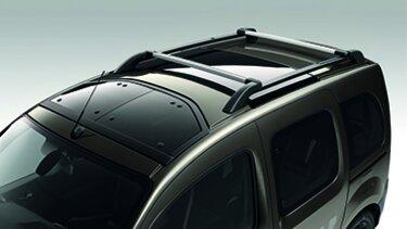 Renault Kangoo E-Tech Dachgepäckträger