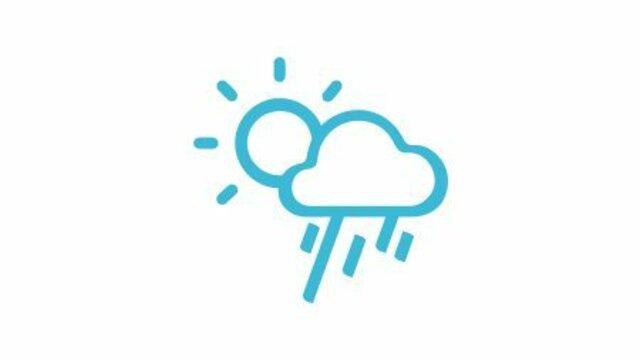 Renault KANGOO Z.E. Wetterbedingungen