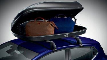 Coffre de toit CLIO