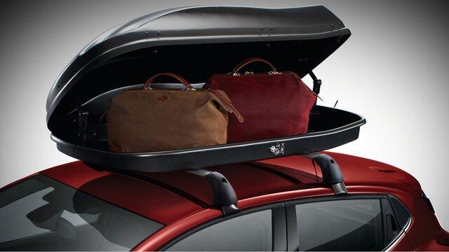 CLIO Tavan bagajı