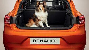 Ny Renaylt CLIO bag