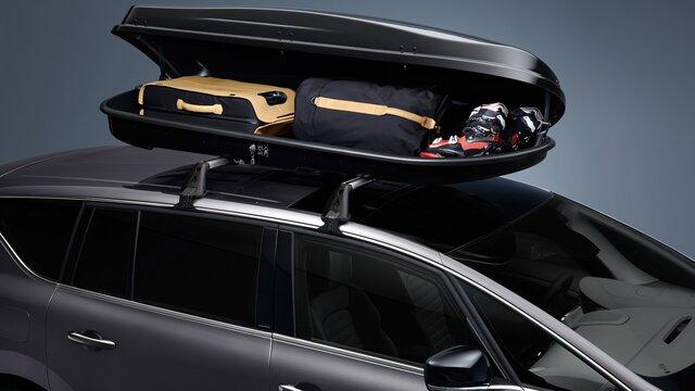 Dakdrager - Renault