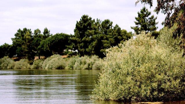 praia fluvial montargil
