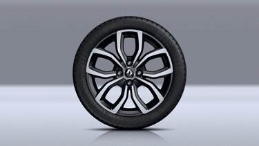 Disky kolies Renault CLIO