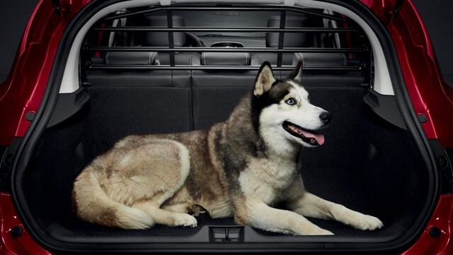 CLIO Ayırıcı ızgara